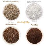 Đá Pumice/ Vermiculite/ Peat Moss
